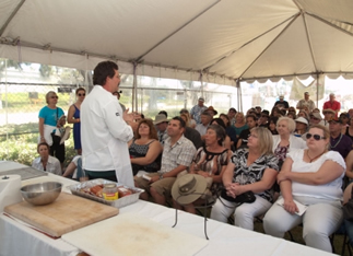 TASTE OF LOUISIANA COOKING DEMOS